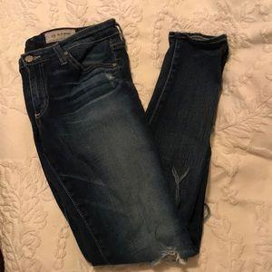 AG Adriano Goldschmied skinny jean